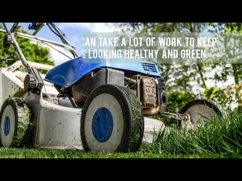 Spraying Utah Grass for Weeds - Lawn Care Services in North Salt Lake & Bountiful