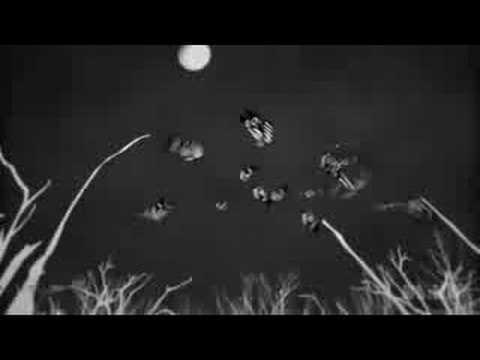 The Raveonettes - Black/White