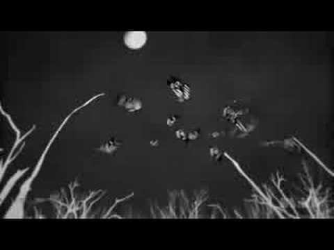 Raveonettes - Blackwhite