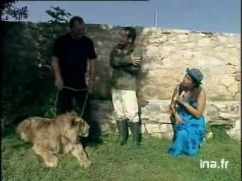marie ange nardi vs lion