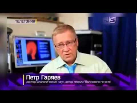 ПЕТР ГАРЯЕВ О ТЕЛЕГОНИИ