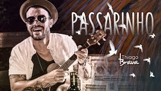 download musica Thiago Brava - Passarinho