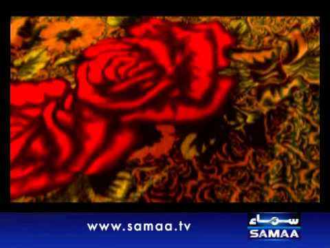 Meri Kahani Meri Zabani, September 16, 2012 SAMAA TV 1/4