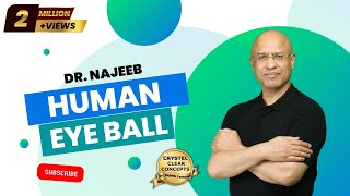 Human Eye Anatomy - Structure & Function