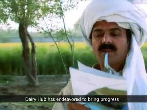 Ep 1 - Dairy as a Business - Dairy Hub TV Training Programmes