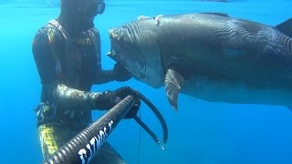 TUNA 65KG SPEARFISHING