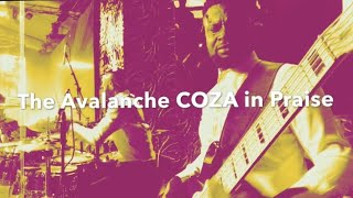 Hot!!!!! A Little Techno and Caribbean from the Avalanche! - musicians angle