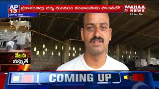 Success Story of Software Employee Dairy Farm | Prakasam