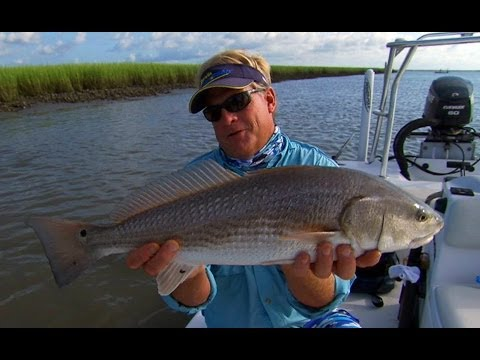 Addictive Fishing: Low Country Reds - REDFISH on the flood tide