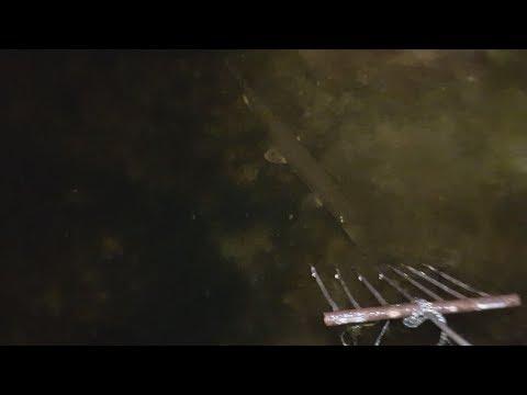 Подводная охота на щуку с ружьем ночью видео. Ловля щуки с лодки