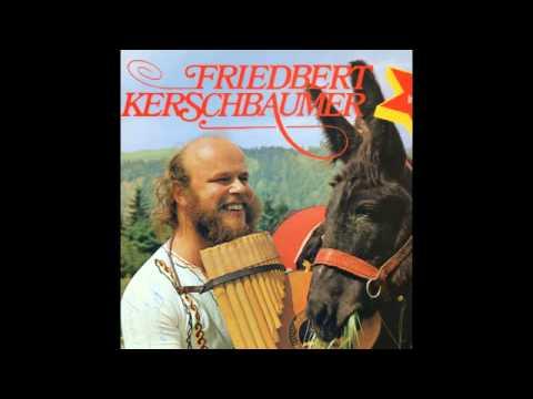 Friedbert Kerschbaumer -  Arbeiten