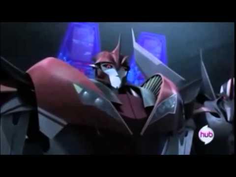 Really Random Transformers Prime