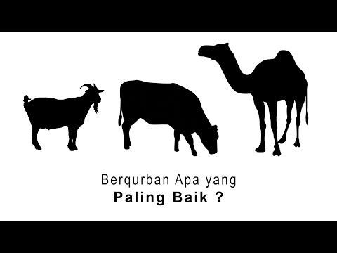 Tanya Jawab Islam: Berqurban Apa yang Paling Baik