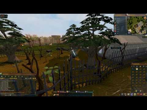 Let's Play RuneScape - Episode 40