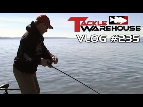 Strike King 3XD & 4s Crankbaits with Mark Menendez at Kentucky Lake - Tackle Warehouse Vlog 235