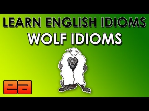 Wolf Idioms – Learn English Idioms – Animal Idioms – 3 – EnglishAnyone.com