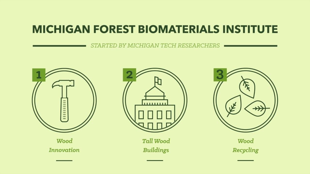 Preview image for Forest Biomaterials Research video