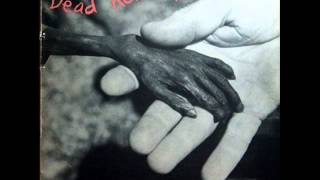 Watch Dead Kennedys Riot video