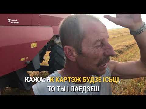 Лукашэнка ціснуў руку камбайнэру | Лукашэнка пожал руку комбайнёру