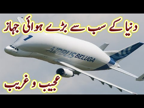 Insanely Big Commercial Airliners In The World | Urdu Documetary | Factical