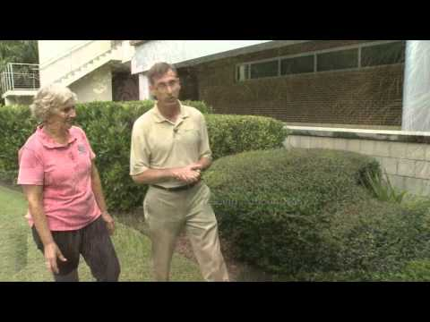 Central Florida Gardening   Creating Florida Friendly Landscapes