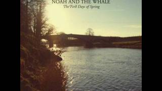 Watch Noah  The Whale Love Of An Orchestra video