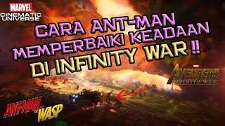 Cara Ant-Man and The Wasp Memperbaiki Keadaan Di Infinity War | Teori Quantum Realm | Indonesia