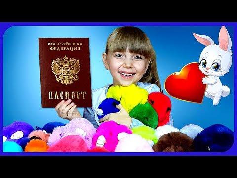 О ветеринарном паспорте животного