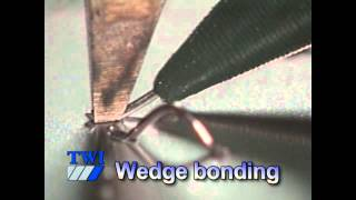 Ball, Wedge and Ribbon bonding