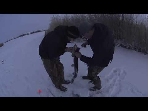 Рыбалка в Парке Юрского Периода! Ловля Щуки на древней реке Куланотпес Первый лёд в Казахстане 17 18
