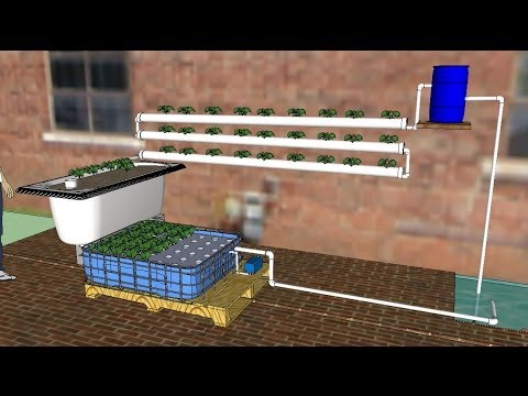 DIY Aquaponics for Beginners 2014, a How To guide to making your first AP system