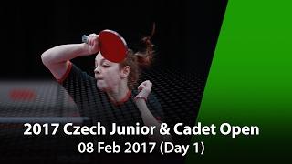 Молодежный Чемпионат Чехии : Зубри