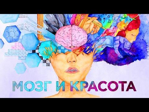 Загадки мозга: как мы различаем красоту? | ИНСАЙТ