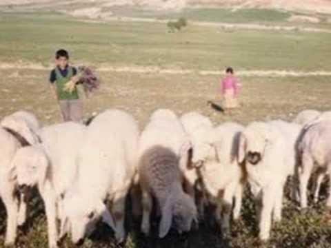 Yar Senin Olsun((Uzun Hava))-Basak Köyü...
