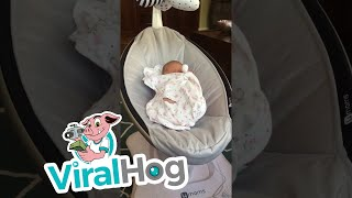 Cat is Jealous About New Baby || ViralHog
