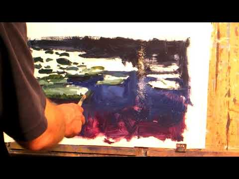Water Lillies study - Richard Robinson Video