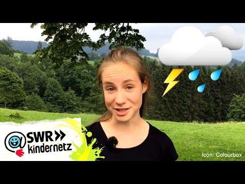 Blitz und Donner - Magst du Gewitter?! | Tiere bis unters Dach | SWR Kindernetz