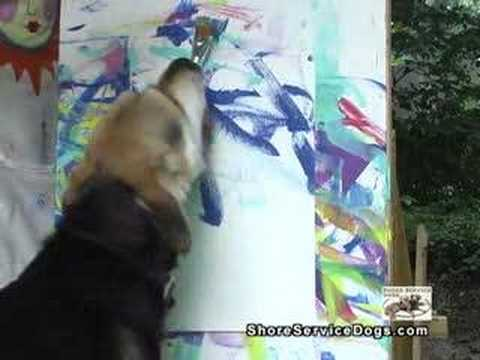 Sammy the Painting Dog - ShoreServiceDogs.com