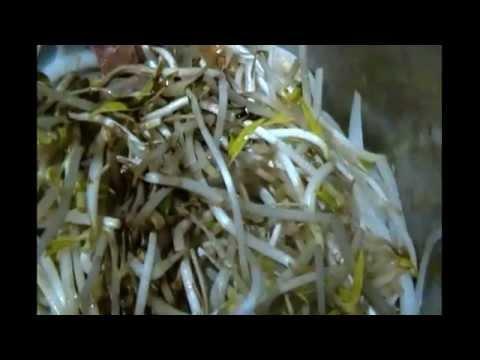Pollo con germinado.-LuzMa CyR