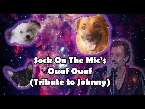 CLIP OFFICIEL//Sock On The Mic's-Ouaf Ouaf (Tribute To Johnny Hallyday) | Chien