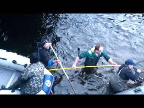 рыбалка в ягельном бору