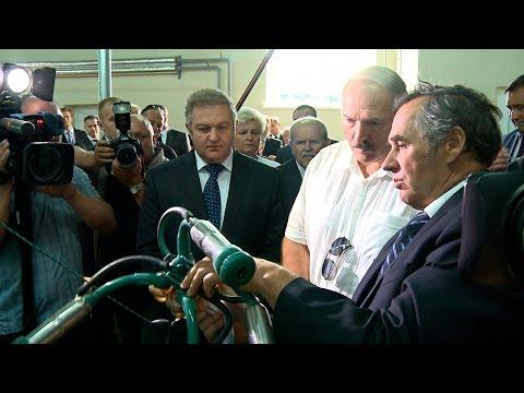 """Лукашенко посетил ГП """"ЖодиноАгроПлемЭлита"""""""