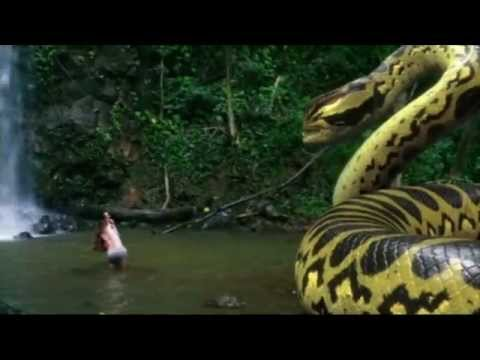 Piranhaconda is listed (or ranked) 9 on the list The Best Syfy Original Movies