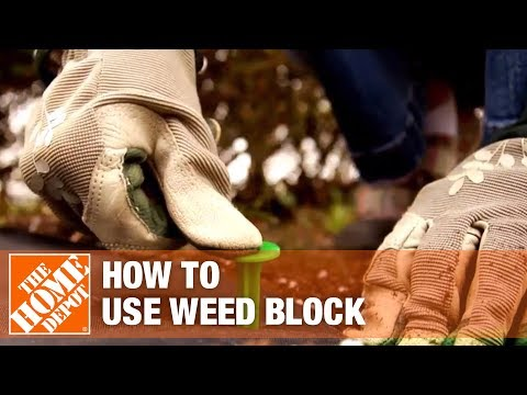 Why You Should Use a Weed Block - The Home Depot