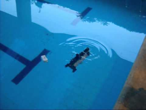 Electro-chem (Submarine) Underwater Explorer ROV in action