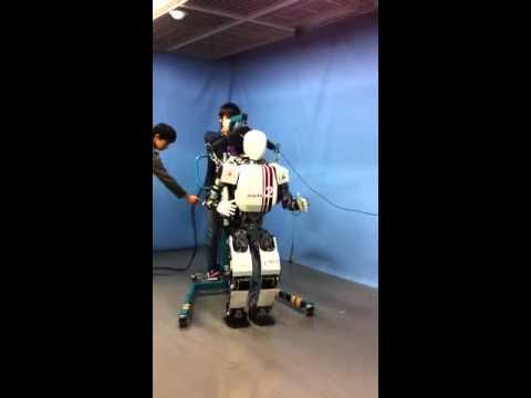 Humanoid Robot Demo, Waseda University
