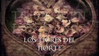 Vídeo 205 de Los Tigres del Norte