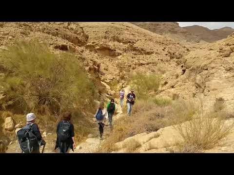 טיול בנחל עקרבים