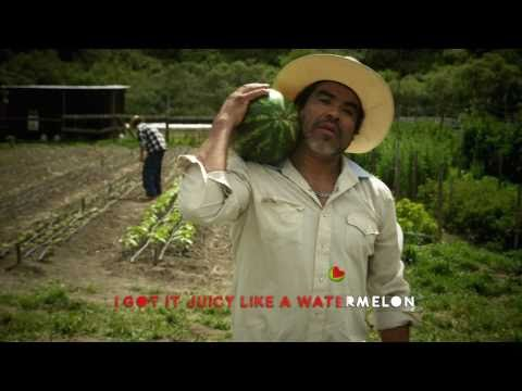 "D.Willz ""Watermelon"" Official Music Video"