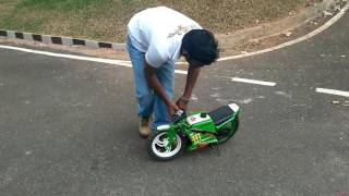 Smallest pocket bike baja race